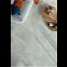 Carrelage intérieur OPEN AIR 60x60 rectifié - ASCOT CERAMICHE